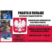 Легальное трудоустройство в Польше фото