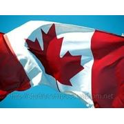 Трудоустройство в Канаду фото