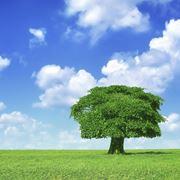 Разрешение на выбросы загрязняющих веществ фото