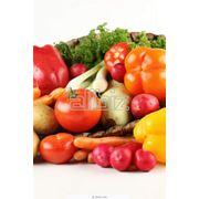 Сертификация продуктов питания фото