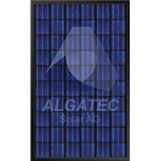 Панель солнечная ALGATEC BlackLine poly фото