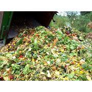 Утилизация отходов пищевого производства и предприятий общественного питания Утилизация отходов пищевого производства в Алматы ТОО МВ Арна фото