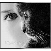 "Семинар ""Женщина-Кошка"" фото"