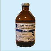 Гентал - комплексный антимикробный препарат с широким спектром антимикробного действия фото