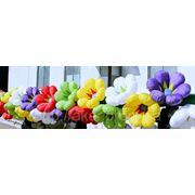 Самораскрывающаяся гирлянда цветов