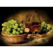 Винный тур «Традиции Крымского виноделия» фото
