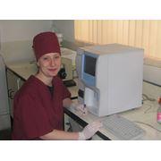 Общий и биохимический анализ крови животных фото