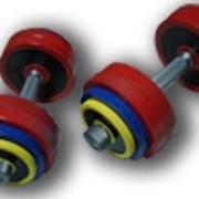 ГР-007 Гантели разборные цветные 10 кг в наборе пара фото