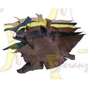 Обувь из рептилии Индивидуальный пошив обуви фото
