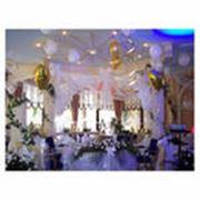 Оформление помещений живыми цветами в Алматы фото