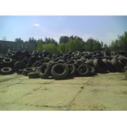 Сбор и переработка изношенных автошин фото