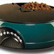 Автоматическая кормушка для кошек, собак, домашних животных! фото