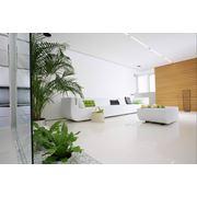 Оформление интерьеров квартир цветами фото