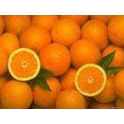 Аренда складских помещений для хранение апельсинов фото