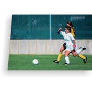 Тафтинговые покрытия для футбольных полей(искусственный травяной газон) фото