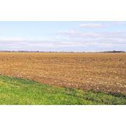 Земельные участки для бизнеса: продажа Земельые участки фото