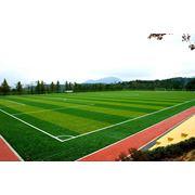 Искусственная трава Italgreen Taishan фото