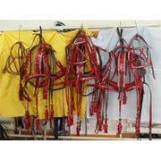 Приём и реализация амуниции для лошадей амуниция для лошадей фото