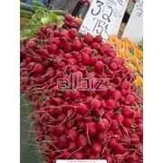 Торговля сельскохозяйственной продукцией фото