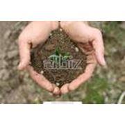 Анализ грунтов почв и вод фото