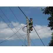 Строительство линий электропередач всех типов напряжений (04-750кВ) фото