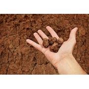 Подготовка площадок для строительства скважин (снятие плодородного слоя почвы) фото