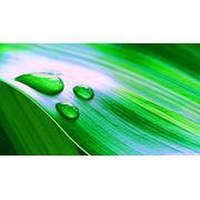 Перечень разрабатываемой документации в области охраны окружающей среды фото