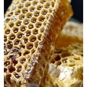 Мед натуральный, Мед натуральный оптом фото