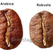 Кофе в зернах Арабика и Робуста фото