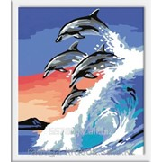 Картина по номерам Четыре дельфина фото