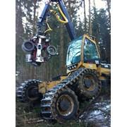 Услуги лесозаготовительного комплекса фото