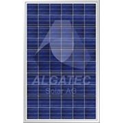 Панель солнечная ALGATEC CrossLine poly фото