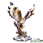 Садовая фигура Орел на коряге фото