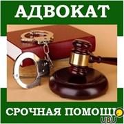 Адвокат по уголовным делам. фото