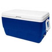 Сумка-холодильник Igloo Family 52 фото