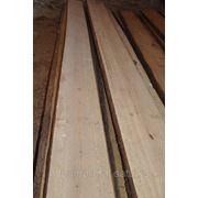 Сосна древесина фото