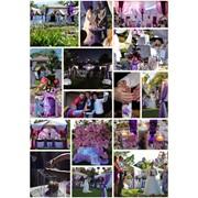 Фиолетовая бабочковая свадьба фото