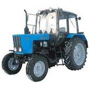 Тракторы МТЗ Беларусь фото