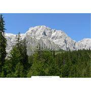отдых в горах фото