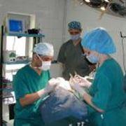 Эстетическая хирургия фото