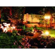 Устройство систем освещения в саду фото