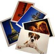 Полноцветное дублирование печать на дисках обложках фото