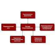 Организация и ведение управленческого учета фото