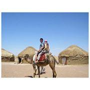 Верблюжий тур в пустыне Кызылкум фото