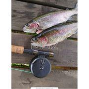 Туры на охоту и рыбную ловлю фото