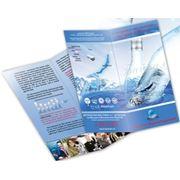 Буклет рекламный фото