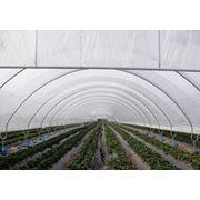 Покрытие для парников и теплиц Solaroof 172 фото