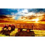 Комплексы сельскохозяйственные фото