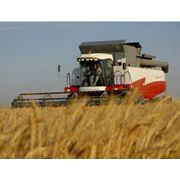 Сельскохозяйственная техника фото