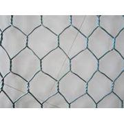 Шестиугольная сетка Ташкент фото